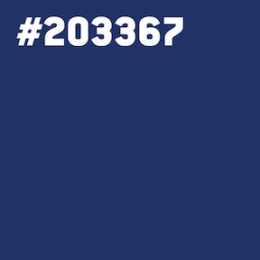 A blue square with hex code 203367.
